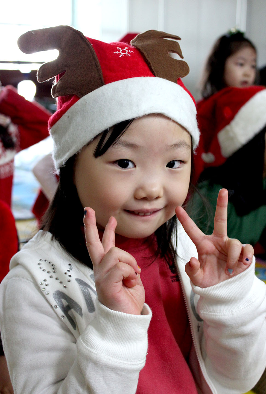 Christmas Chikadees