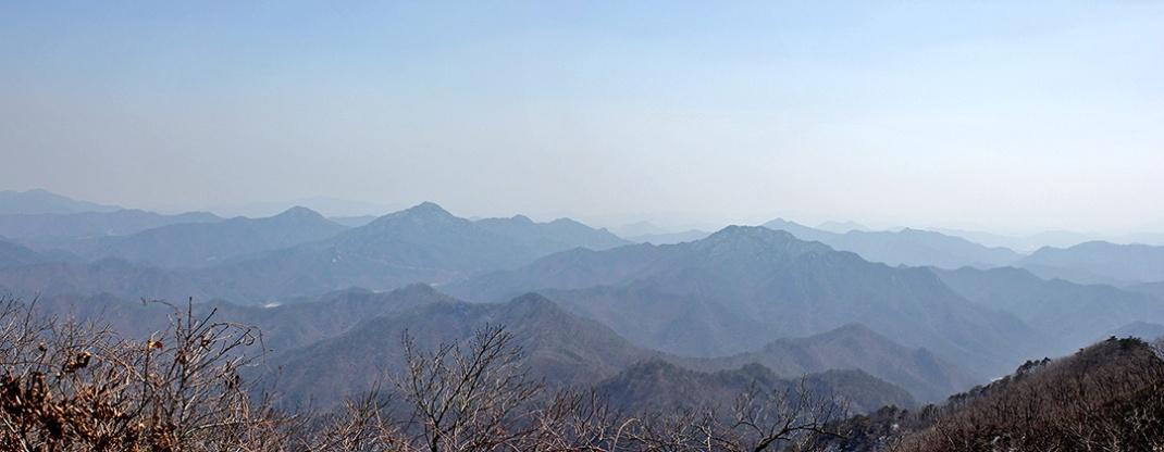 Birobong