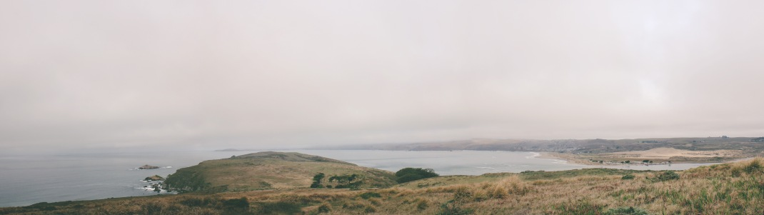 Tomales Point Hike