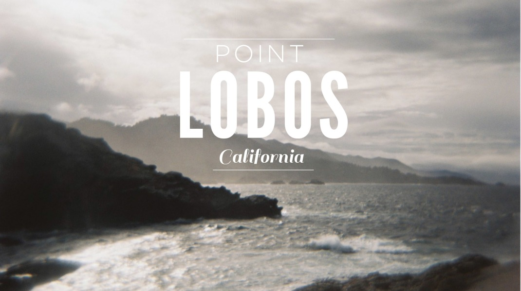 Point Lobos Cover